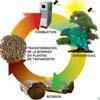 Informe de Producción y Consumo Responsable y Residuos Agrarios