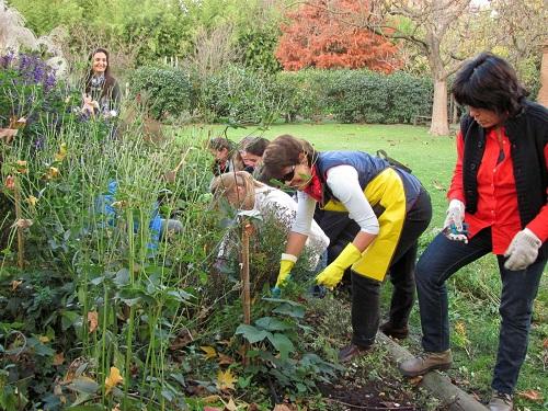 Curso de «Instalación y Mantenimiento de Jardines y Zonas Verdes»