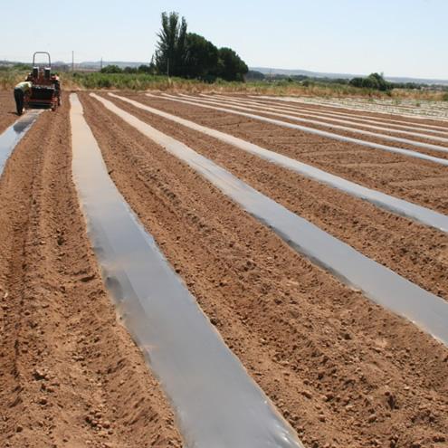 Servicio de Gestión Integral del Parque Agroecológico del Soto del Grillo