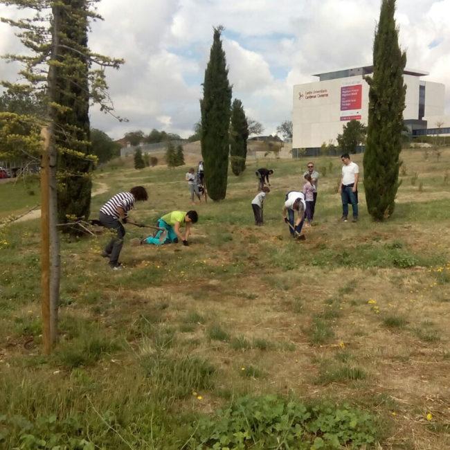 Plantación en el Bosque del Quijote, en Alcalá de Henares (Madrid). Año 2017
