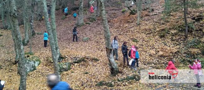 Excursión etnobotanica a Sierra de Madrid con colegios de Madrid y Heliconia