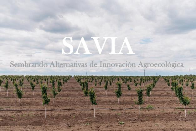 Sembrando Alternativas de Innovación Agroecológica