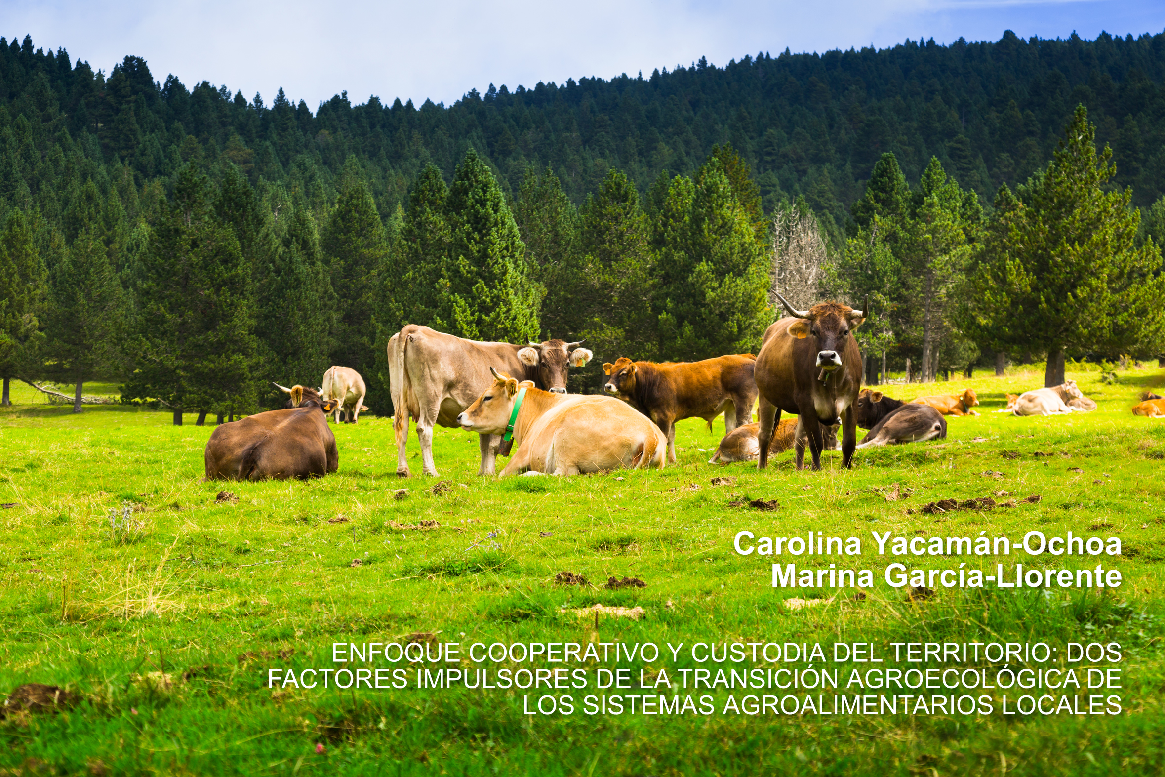 Patrimonio y gobernanza territorial de los sistemas agroalimentarios locales, Carolina Yacamán