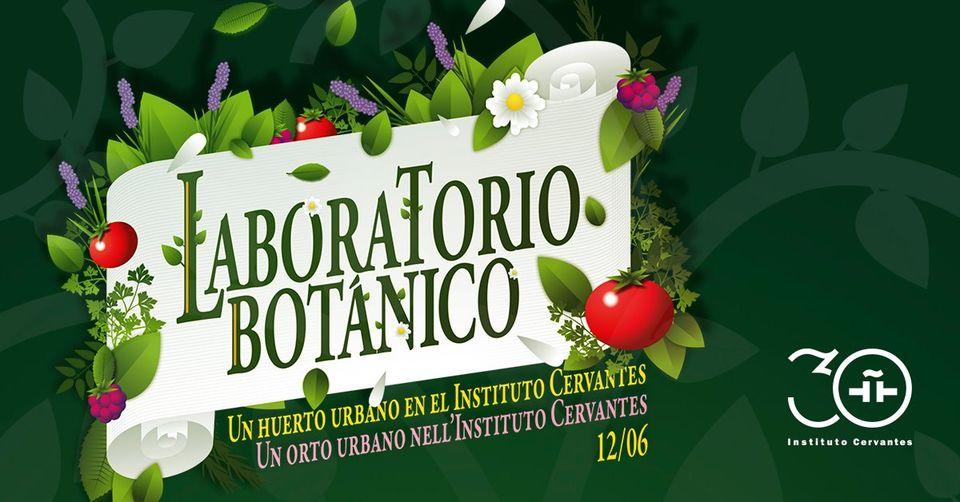 Actividad de Heliconia en Roma con el Instituto Cervantes